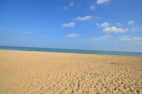 Out of the things to do in Hemsby, the beach is an obvious choice for a day out with the family!