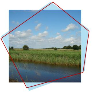 Top Nature Reserves near Great Yarmouth