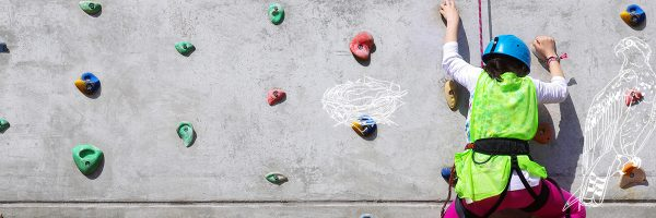 Go Active Climbing Wall